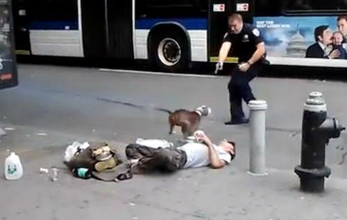 Video: Policía mata a un perro que intentaba defender a su dueño en el centro de Nueva York