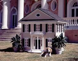 Mansiones para perros. Video
