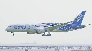 Suspenden todos los vuelos del nuevo Boeing 787