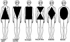 Los 7 tipos de cuerpos y sus cualidades