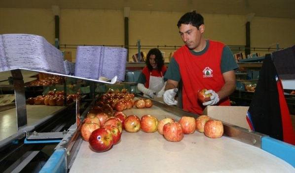 Fiesta Nacional de la Agricultura en Rio Negro