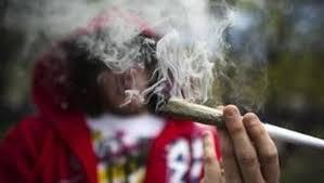 """Ofrecen el """"tour de la marihuana"""" en EEUU"""