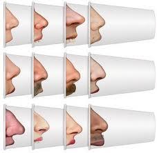 Porque las narices tienen formas diferentes