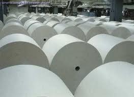 Estiman la producción e importación de papel para diarios
