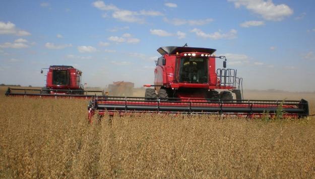 El INTA logra reducir pérdidas de granos durante la cosecha