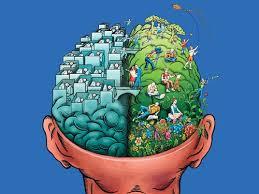 Cómo funciona el cerebro de los hombres