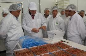 Vía libre a la exportación de langostinos a Brasil