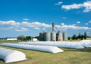 Comercio Interior dispuso aplicar la Ley de Abastecimiento al trigo para garantizar el suministro al mercado interno