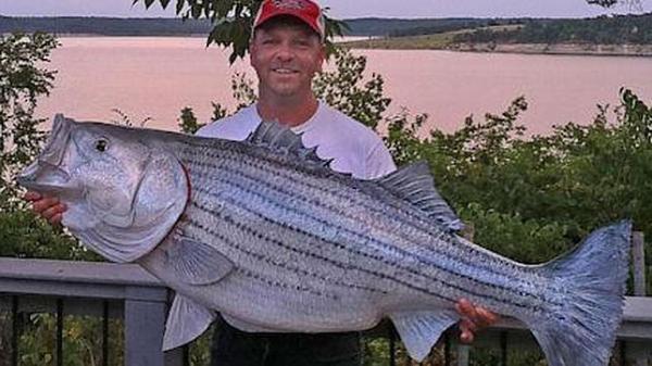 Reclama un millón de dólares por pescar un pez enorme