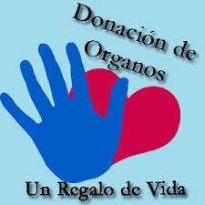 Invitan a expresar la intención de donar órganos durante las elecciones el próximo domingo