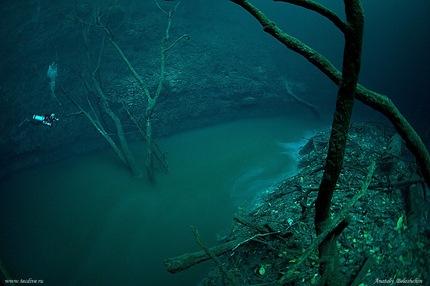 Un río en el fondo del mar