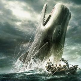 Malvinas: el hombre que vivió dentro de una ballena