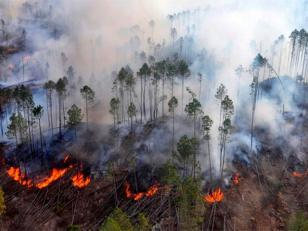 Rescatan a los 50 chicos varados por incendio en el cerro Champaquí