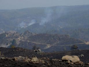 Focos de incendio siguen activos en Córdoba