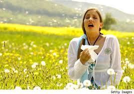 Remedios caseros y naturales para las alergias de primavera