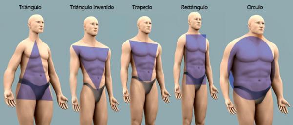 Tipos de cuerpo de los hombres