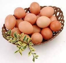 ¿Deben guardarse los huevos en la heladera?