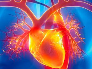 Que es una Arritmia cardiaca y que riesgos tiene