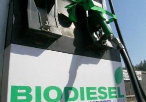 Proteccionismo europeo afecta exportaciones de biodiesel