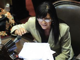 """Diana Conti : """"Cristina nos dijo que no irá por un tercer mandato"""""""