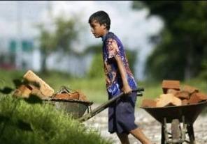 Plan para la prevención y erradicación del trabajo infantil