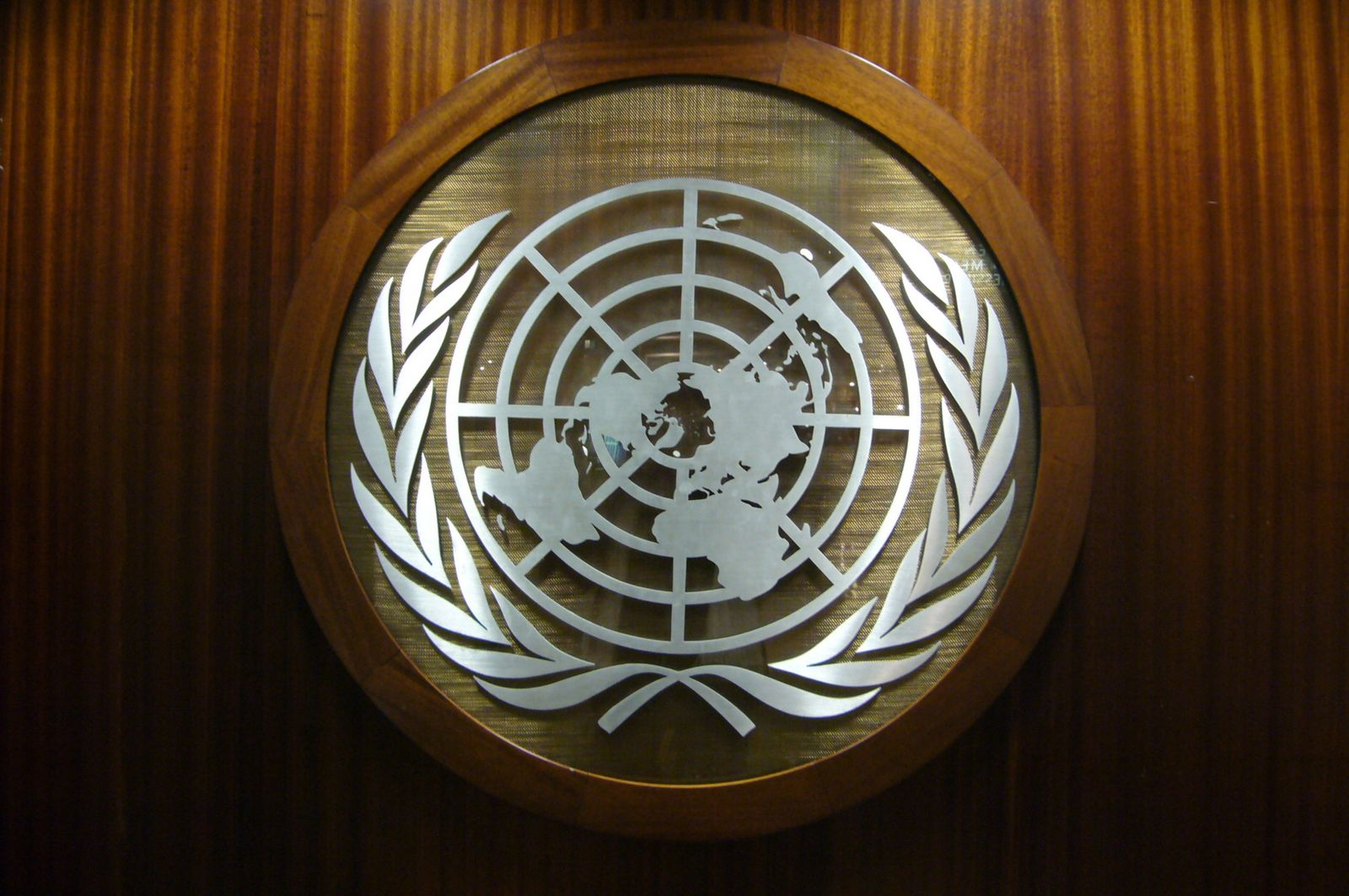 Malestar en Gobierno argentino por actitud de la relatora especial de las Naciones Unidas