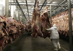 Protocolo para exportar carne de calidad a Rusia desde Argentina