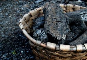 Nueva norma para exportadores de carbón vegetal