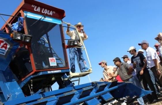 Una cosechadora argentina que prensa el algodón
