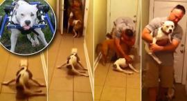 Video : El reencuentro de un soldado con su perra Emma