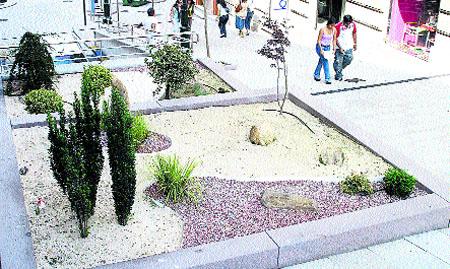 Fotos de jardin zen for Como hacer un jardin zen