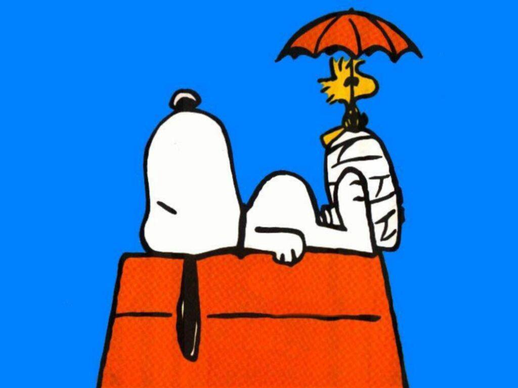 Pics Photos - Snoopy Jpg
