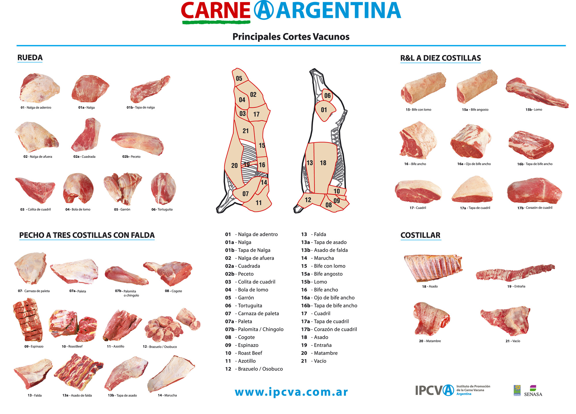 Beef Cuts of Meat