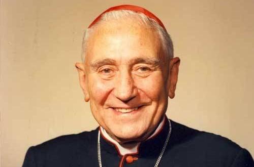 Cardenal argentino podría ser beato por curar a intoxicado con purpurina
