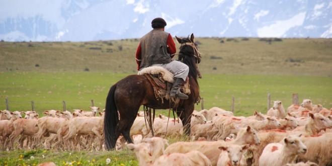 """Rodríguez: """"El salario del peón rural creció en más de un 1400% en la última década"""""""