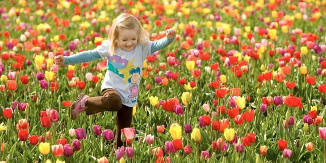 La primavera recién comenzará el lunes 22, a las 23.30 hs.
