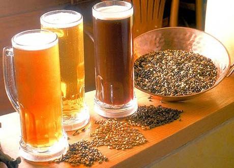 Proyecto de cervezas artesanales