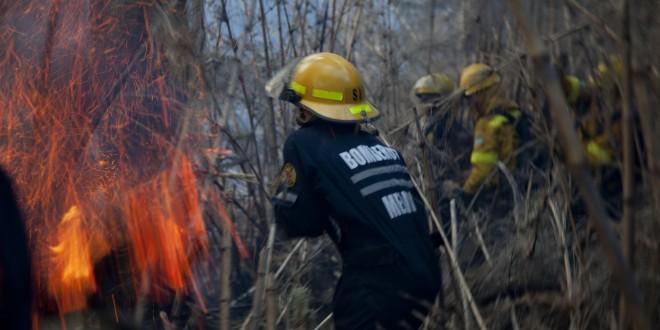 Defensa aportó personal al combate de varios incendios