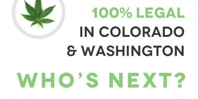Cómo es el negocio de la marihuana en EEUU