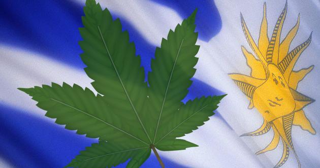 Uruguay le vendería marihuana a Canadá