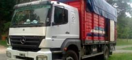 w camioneros alcoholizados viajaban en contramano hacia Mar del Plata