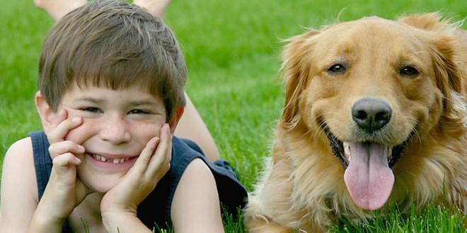 Las mejores razas de perro para los chicos
