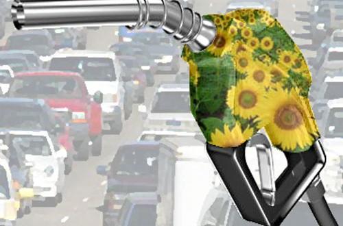 El biodiesel no pagará impuestos
