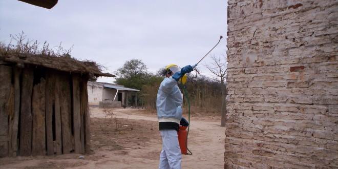 Control del chagas en Tucumán