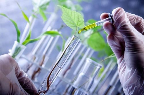 Representantes argentinos del sector de biotecnología en Suecia
