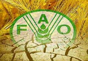 Nuevo embajador argentino ante la FAO
