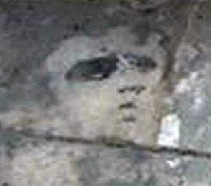 Aparece el Rostro de Elvis en el patio de una casa