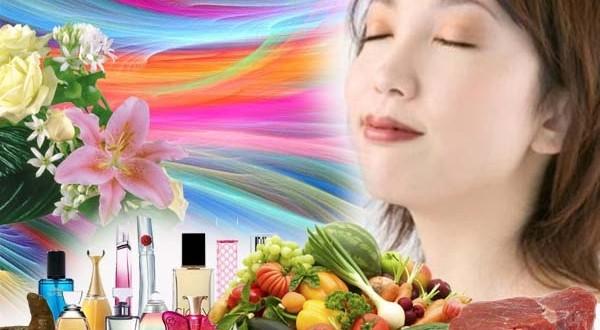 El humano es capaz de sentir hasta un billón de olores