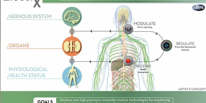 Dispositivo monitoreará los órganos del cuerpo, curándolos cuando se infectan o lastiman