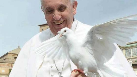 El Papa Francisco es favorito para ganar el Premio Nobel de la Paz